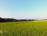 Продаю земельну ділянку 15 соток с. Матвіївка